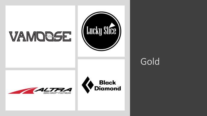 Sponsor - Gold - 2019-01-04a